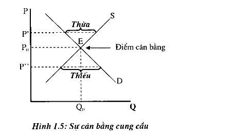 su-can-bang-cung-cau