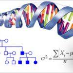 Tính quy luật của hiện tượng di truyền- sách giáo khoa sinh học lớp 12 cũ