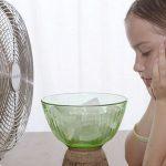 Chia sẻ mẹo hay sử dụng quạt hiệu quả trong mùa nóng